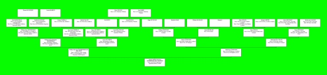 Tom & Bill Owen ancestry chart